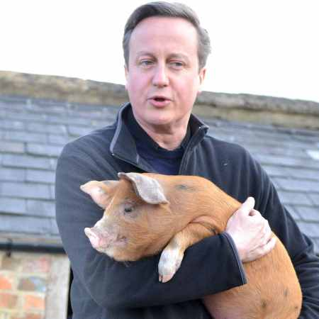 cameron-and-pig01