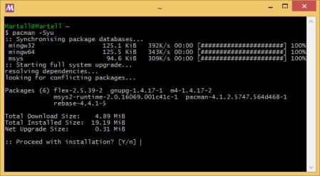 msys2-bash-terminal